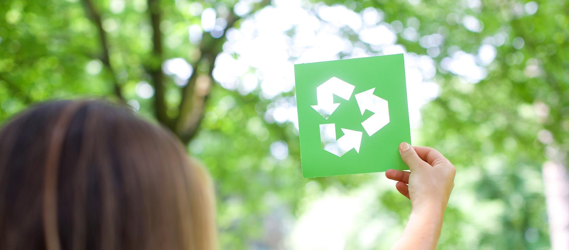 Green Ambiente